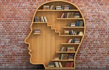 book brain